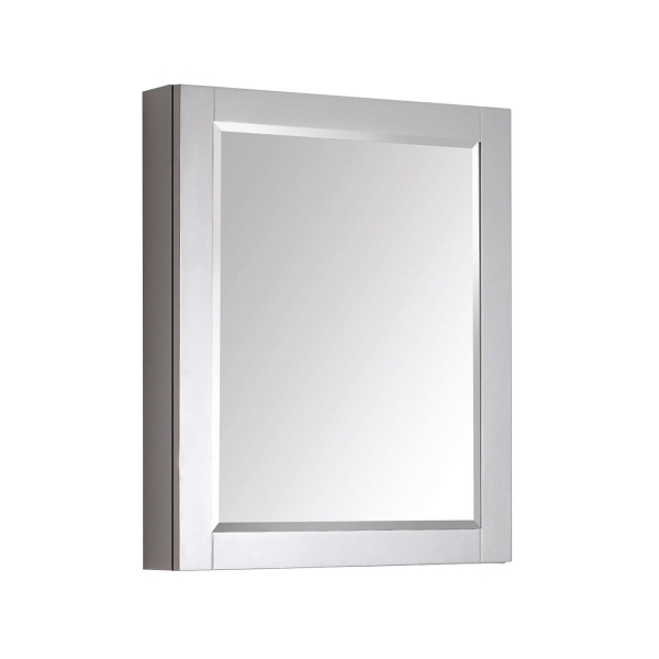 14000 24 in. Mirror Cabinet
