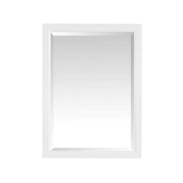 EMMA 22 in. Mirror Cabinet